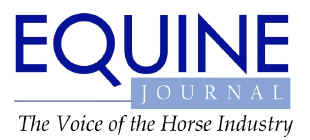 'Equine Journal' - The Voice of the Horse Industry