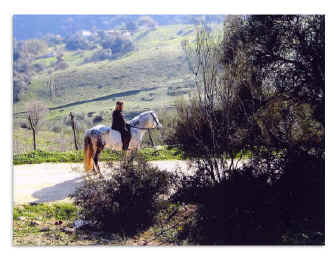 Petra Sherman and the magnificent Spanish-Norman stallion 'Soldado H.H.F., sired by the late Embajador IX, enjoy the countryside in southern Spain.